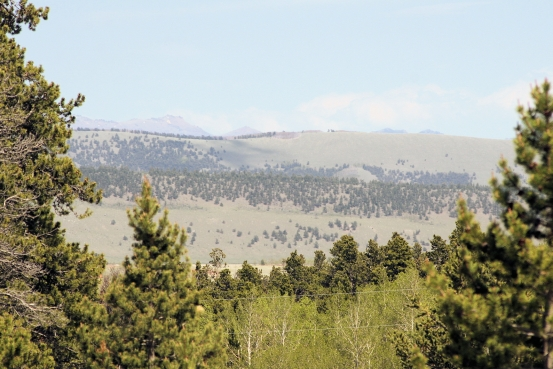 Foxtail Pines Lot 127 Red Hill View
